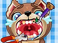 Hunde- zahnarzt