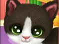 Katzenwäsche 3: Welpen und Kätzchen